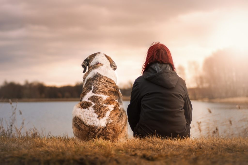 How A Pet Can Improve Your Entourage for The Better